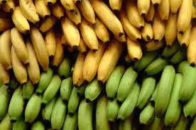 banana-farming-in-nigeria