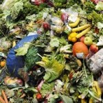 how-to-stop-food-waste