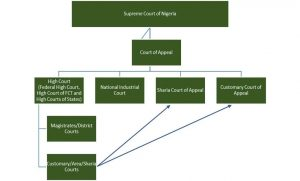 diagram-of-the-hierarchy-of-courts-in-nigeria